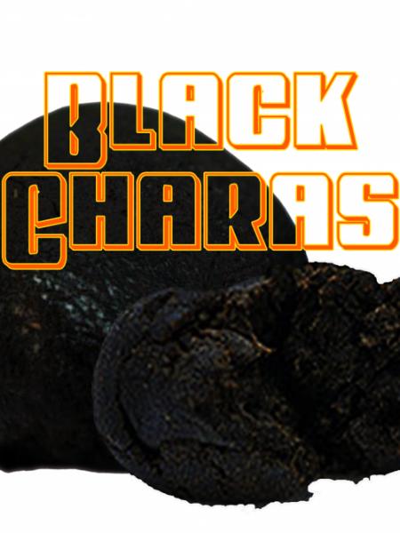 BLACK CHARAS HASHISH LEGALE